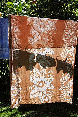 Wäscheleine im Garten - p0452969 von Jasmin Sander
