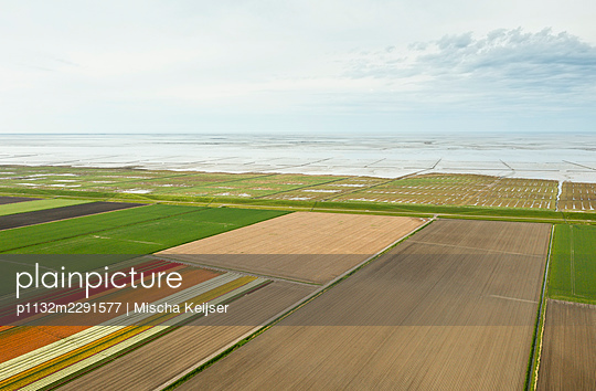 Fields and grassland, aerial view - p1132m2291577 by Mischa Keijser