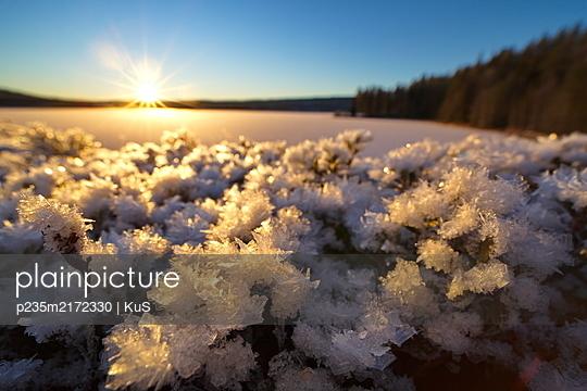Weitwinkel-Makro von raufreifbedeckten Pflanzen am Ufer eines zugefrorenen Sees in der Morgensonne - p235m2172330 von KuS