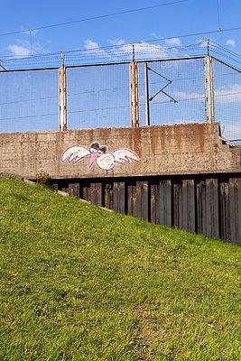 Möwe - p1271m1083973 von Maurice Kohl