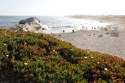 Bay of Santa Cruiz - p214m1008236 by hasengold