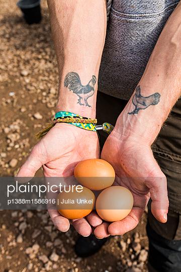 Hühnertattoo und Eier 2 - p1388m1586916 von Julia Unkel