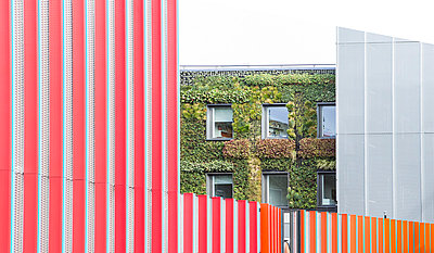 UK, London, view at facade greening - p300m873614 by Dieter Schewig