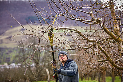 Mid adult male farmer using hedge trimmer while pruning bare tree at orchard - p300m2277603 by Sebastian Dorn