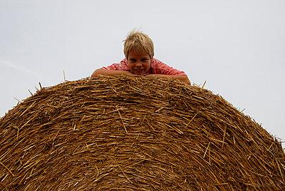 Blonde boy on a hay bale - p1840128 by Lobster