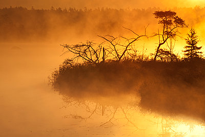 Autumn morning mist glowing yellow on Rocky Lake; Bedford, Nova Scotia, Canada - p442m1482806 by Irwin Barrett