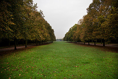 In the park - p445m729214 by Marie Docher