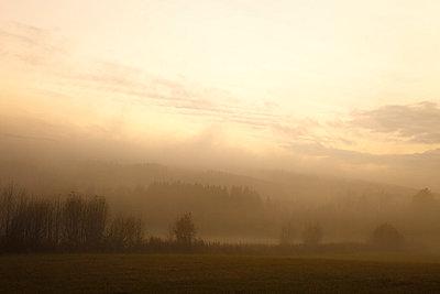 Neblige Landschaft an einem Herbstmorgen - p235m881112 von KuS