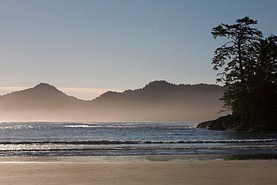 Chesterman's Beach, Tofino, Vancouver Island, British Columbia, Canada - p4426511f by Design Pics
