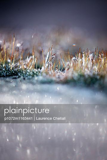 p1072m1163441 von Laurence Chellali