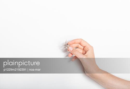 Hand holding bird-shaped brooch - p1229m2192391 by noa-mar