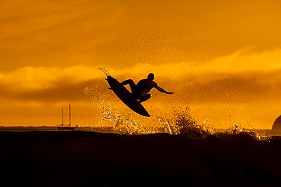 Taking flight into the evening light - p1424m1501154 by Dylan Lucas Gordon