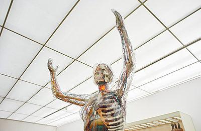 Transparent woman Hygiene Museum Dresden - p390m1221953 by Frank Herfort