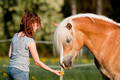 Young girl with her horse - p533m2015602 by Böhm Monika