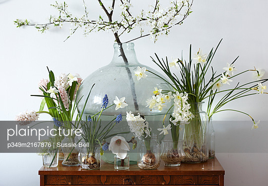 Easter and spring flowers on chest with carboy and jars - p349m2167876 by Sussie Bell