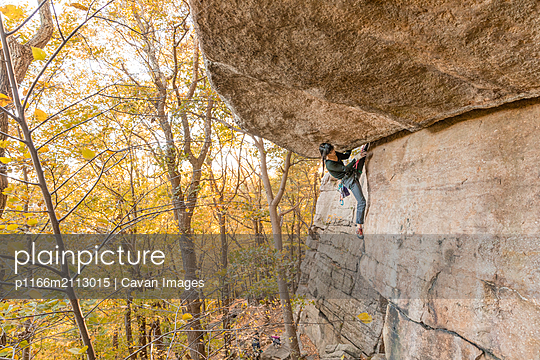 Woman climbing in the fall in the Gunks - p1166m2113015 by Cavan Images