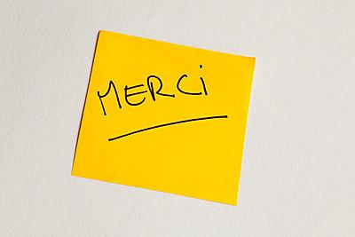 Thank you - p7560080 by Bénédicte Lassalle