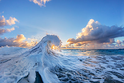 Wave in Pacific Ocean at sunrise, Oahu, Hawaii Islands, USA - p343m1569082 by Sean Davey