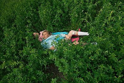Alfalfa - p1636m2216339 by Raina Anderson