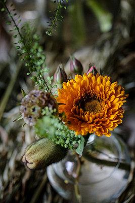 Blumenstrauß aus Mohn, Rosen und Gerbera - p1579m2193458 von Alexander Ziegler