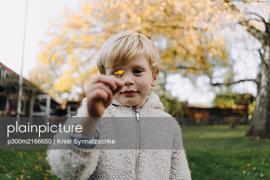 Portrait of boy holding tiny autumn leaf in garden - p300m2166650 by Kniel Synnatzschke