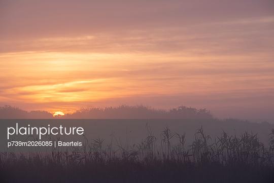 Sonnenaufgang im Herbst  - p739m2026085 von Baertels