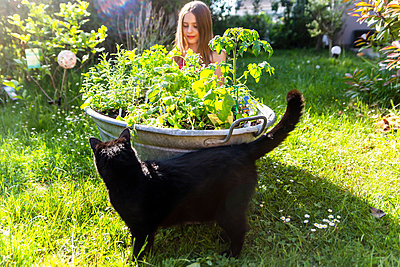 Girl planting herbs in zinc tub in the garden - p300m1588030 von Sandra Roesch
