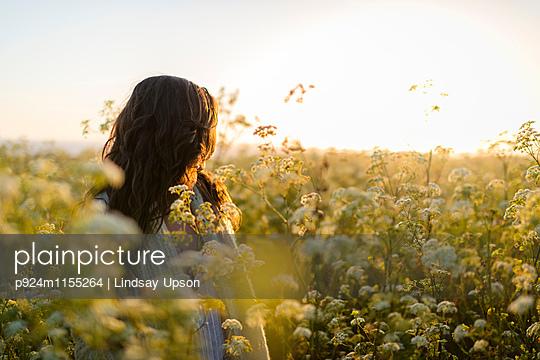 p924m1155264 von Lindsay Upson