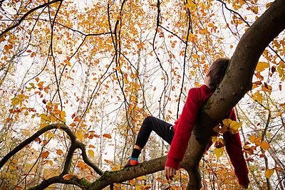 Boy lying on a strong limb - p784m2272951 by Henriette Hermann