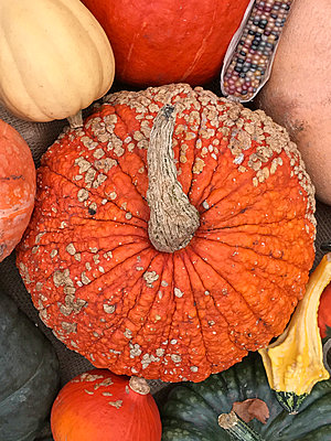 Imperfect pumpkin - p1048m2016846 by Mark Wagner