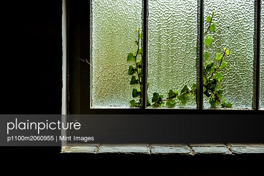 p1100m2060955 von Mint Images