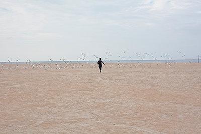 Challenge the seagulls - p1513m2037591 by ESTELLE FENECH