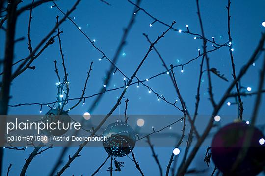 Lichterkette im Baum - p310m971580 von Astrid Doerenbruch