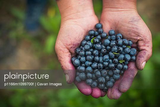 p1166m1099700f von Cavan Images