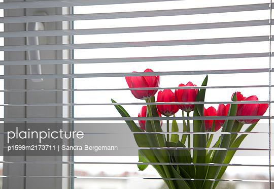 Einsamkeit 2020 - p1599m2173711 von Sandra Bergemann