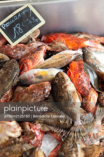 Fresh fish - p756m2125150 by Bénédicte Lassalle