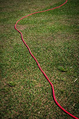 Roter Gartenschlauch - p1170m1111621 von Bjanka Kadic