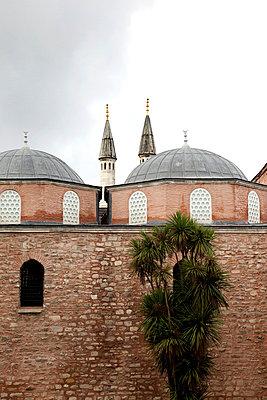 Mosque in Istanbul - p3820279 by Anna Matzen