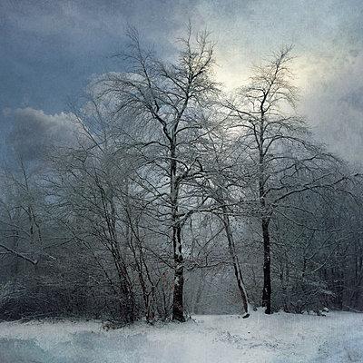 Winterreise - p1633m2208860 von Bernd Webler