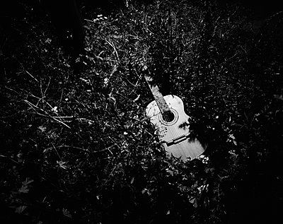 A guitar in the shrubbery, night shot - p1481m2210492 by Peo Olsson
