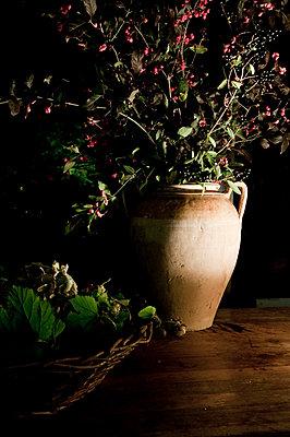 Antike Vase mit Beerenstrauch - p6460271 von gio