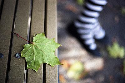 Im Herbst im Park - p6530014 von Alain Astruc