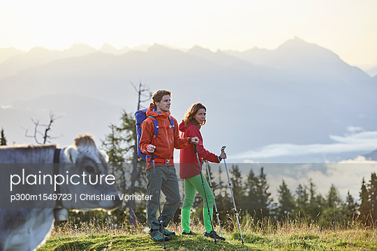 Austria, Tyrol, Mieming Plateau, hikers on alpine meadow with cow - p300m1549723 by Christian Vorhofer