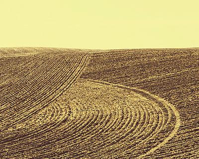 Ploughed earth furrows - p1100m888051f by Paul Edmondson
