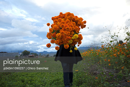 p343m1090237 von Chico Sanchez