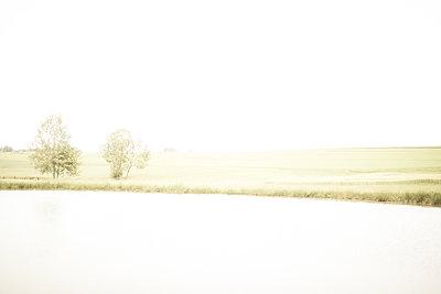 Meadow in Germany overexposure - p1267m1514220 by Wolf Meier