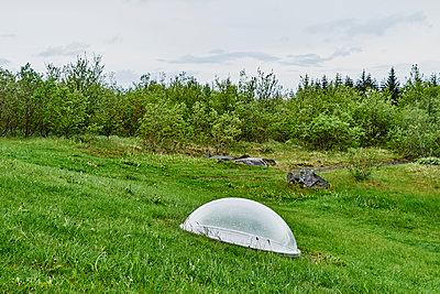 Kuppel aus Glas auf einer grünen Wiese mit Wald - p1312m2093293 von Axel Killian