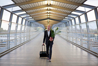 Businessman wheeling luggage with plant - p42917238f by Henglein and Steets