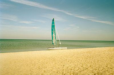 Catamaran on beach  - p1207m1109481 by Michael Heissner