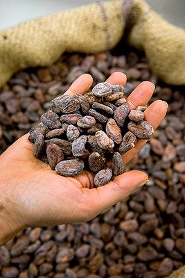 Hand full of cocoa beans - p1216m2182500 von Céleste Manet